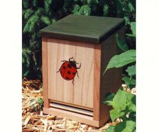 Decorative Ladybug House