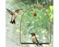 Copper Hummer Swing