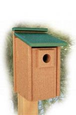 Going Green Bluebird House